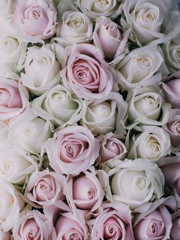 roses bath soak