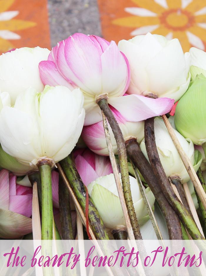 Beauty Benefits of Lotus